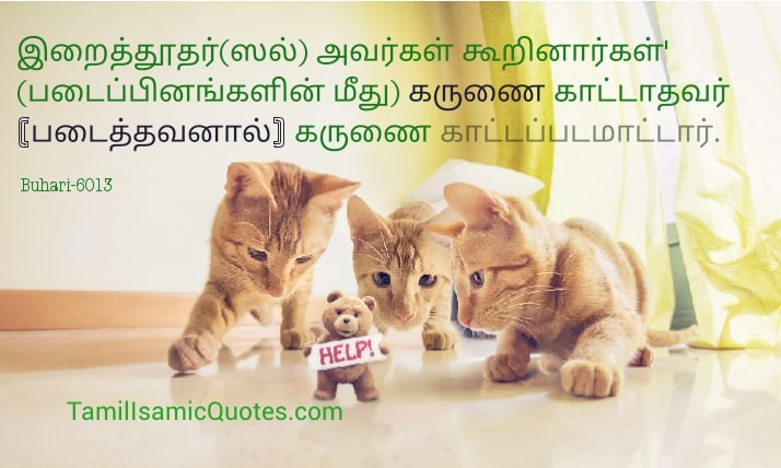 blessing of allah hadees tamil mulim buhari hadith karunai